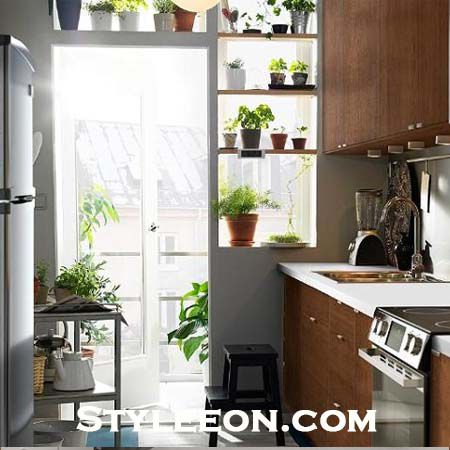 Keep Plants And Flowers In The Kitchen - Kitchen Decor - Styleeon