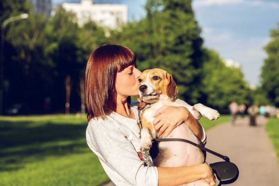 Dog lover || Styleeon |
